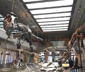 natural history museum student discount tun helps students save rh tun com