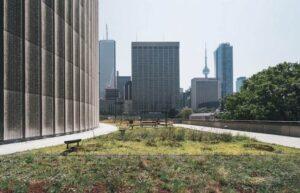 sustainability schools