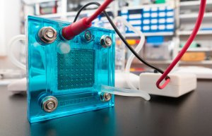 Washington University Fuel Cell Research