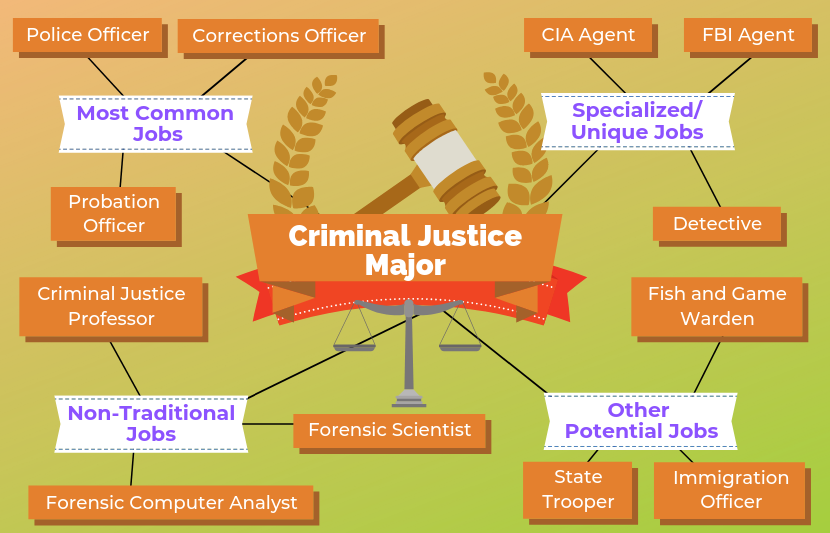 Criminal Justice Degree >> 12 Jobs For Criminal Justice Majors The University Network