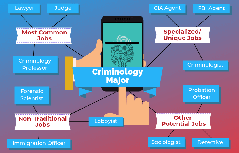 12 Jobs For Criminology Majors The University Network