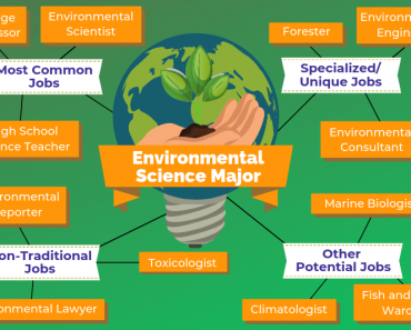 Environmental Science Major Jobs