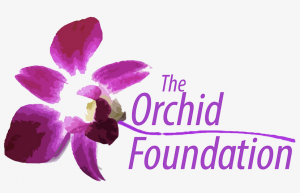 Nichole Galicia's Orchid Foundation Improving Lives of Underserved Girls
