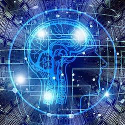 Elija entre más de 150 Cursos de aprendizaje automático en Coursera.