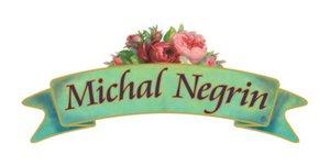 Michal Negrinの学生割引