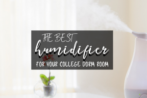 The Best Humidifiers for College Dorms